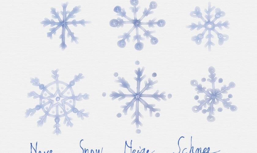 I fiocchi di neve